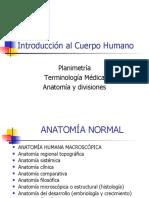 Induccion anatomia