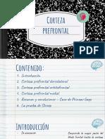 midallos_Corteza prefrontal Martes