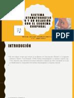 SISTEMA ESTOMATOGNÁTICO Y SU RELACIÓN CON EL ESQUEMA.pptx