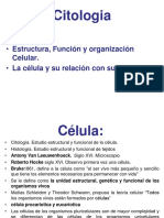 4ta clase - Citologia.pdf