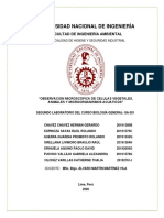 INFORME BIOLOGÍA  - LABORATORIO 2 - E.pdf
