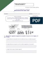 135334083-Guia-de-Celulas-5-Basico.doc