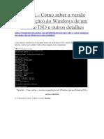 Como pode saber a versão do Windows interna ISO.docx