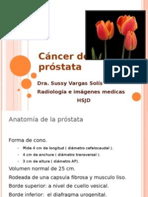 volumen normal de prostata pdf