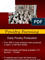 (807182429) 2-Poultry-Farming-needs