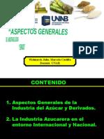 30 TEORÍA-ASPECTOS GENERALES  IND AZUCARERA.pptx