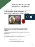 Projet d'étude  La patuline dans les pommes à l'importation au Burkina Faso Barthélemy BAWAR.pdf