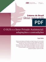 Artigo_ligiabahia_osuseosetorprivado_REVISADO1.pdf