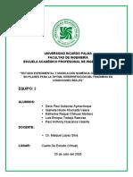 SOCAVACIÓN DE PILAR_LAB-03.docx