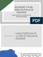 CARACTERÍSTICAS DE LA CRÍA DE POLLOS DE ENGORDE PRESENTACION 1