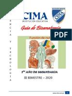 Bioanatomía 2DO III B-RIOS.pdf