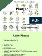 A01_Familias_Plantas.pptx