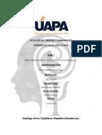 Antropologia General TAREA I
