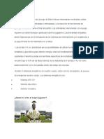 Fisiología Del Futbol