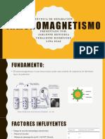 inmunomagnetismo