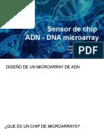 Sensor de chip  ADN - DNA microarray