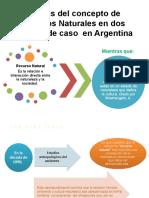 Cuasquer A_ ANALISIS DE RN EN DOS CASOS EN ARGENTINA-1