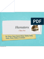 hamsters ppt