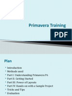 Primavera Training