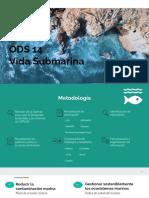 ODS 14_ Vida Submarina
