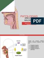 1.faringoamigadilits aguda y cronica.pdf