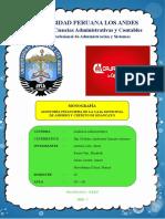 AUDITORIA FINANCIERA - ALMAS LIBRES corregido.docx