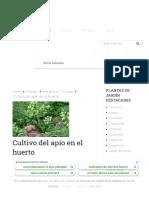 Cultivo del apio en el huerto - Agromática.pdf