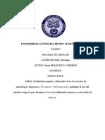 protocolo gema.docx
