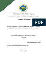 TESISI Amaya (2016) .pdf