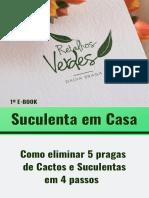 Ebook Retalhos Verdes - Dalva Braga