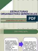 ESTRUCTURA ORGANIZACIONAL..ppt
