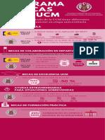 Infografía Becas 2019-2020.pdf