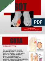GOTA PRESENTASION-1.pptx