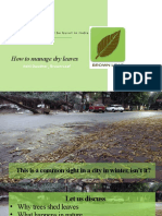 How to manage dry leaves Webinar.pptx