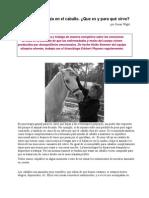 Kinesiología en el caballo.