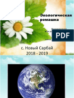 Экологическая ромашка — копия.pptx
