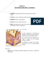 2. Sistema Tegumentario.pdf