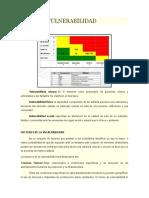 TIPOS DE VULNERABILIDAD.docx