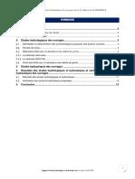 VERIFICATION DES SECTIONS HYDRAULIQUES DES OUVRAGES DU LOT 21 (1)