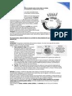 Guía de contenido sobre le ciclo celular y la mitosis