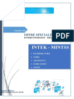 Offre MINTSS-INTEK