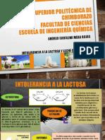 intolerancia a la lactos y leche deslactosada.ppt