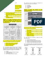 Grado 10-¦ - Biolog+¡a.docx