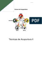 Técnicas de Acupuntura II (3).pdf