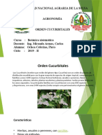 CUCURBITALES OCHOA BOTANICA.pptx