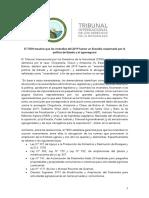 """El TIDN declara que los incendios del 2019 fueron un """"ecocidio ocasionado por la política de Estado y el agronegocio"""""""