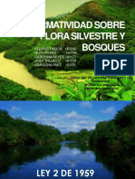 normatividadambiental flora y bosque