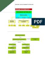 CRONOGRAMA SISTEMATICO.pdf