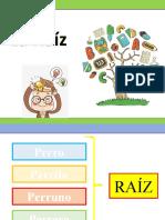 LA RAIZ.pptx