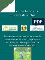 toma_correcta_de_una_muestra_de_suelos_2.pdf